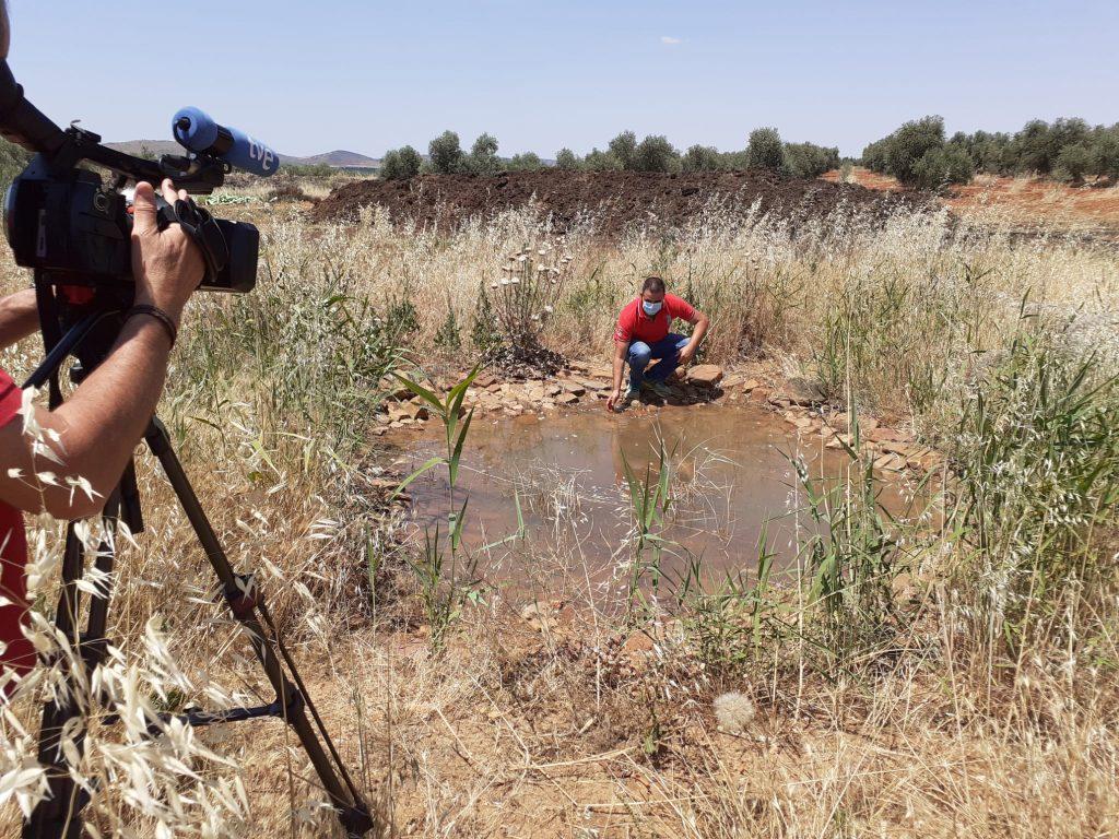 Charca refugio aves y reptiles en nuestra finca Cañada Avilés creada con la Fundación FIRE